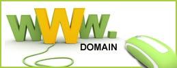domain www